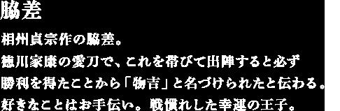 相州貞宗作の脇差。徳川家康の愛刀で、これを帯びて出陣すると必ず勝利を得たことから「物吉」と名づけられたと伝わる。好きなことはお手伝い。戦慣れした幸運の王子。